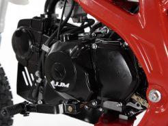 jjm-pitbike-y125-14-12-cervena-3.jpg.big